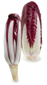 Early and late red radicchio